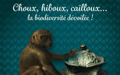 Choux, Hiboux, Cailloux, La biodiversité dévoilée